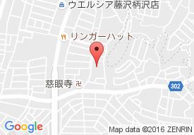 ミモザ藤沢