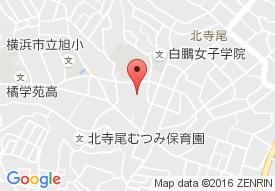 もみの樹・横浜鶴見