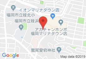 テラシス桜花