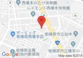 ネクサスコート橋本