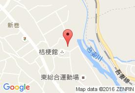 東吾妻町すこやかセンター福寿草